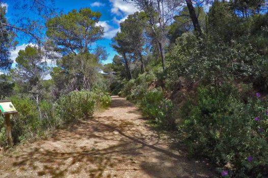 Ruta de senderismo en Marbella